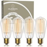 Antique Style Edison Dimmable Bulb (60w 4-Pack) amazon review