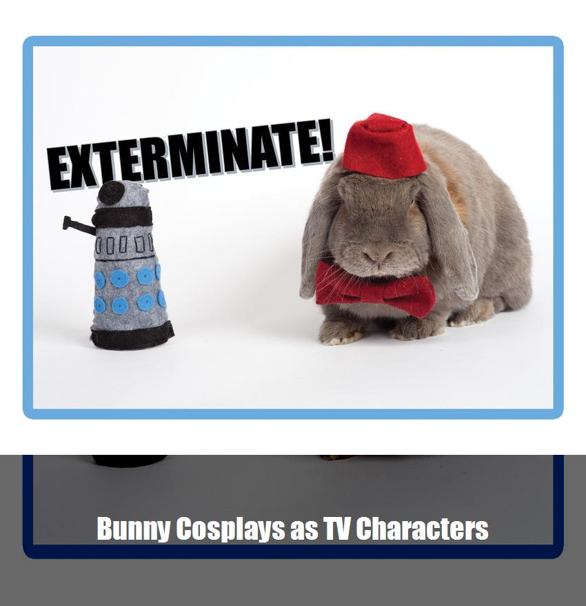 Bunny Cosplays As Tv Characters 1