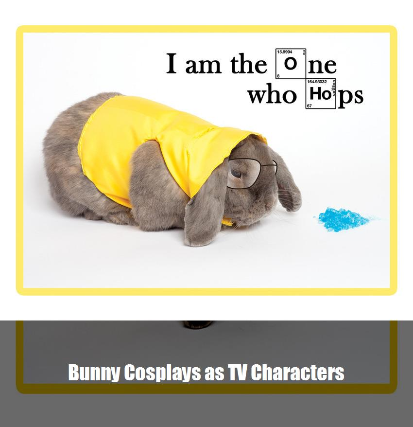 Bunny Cosplays As Tv Characters 3
