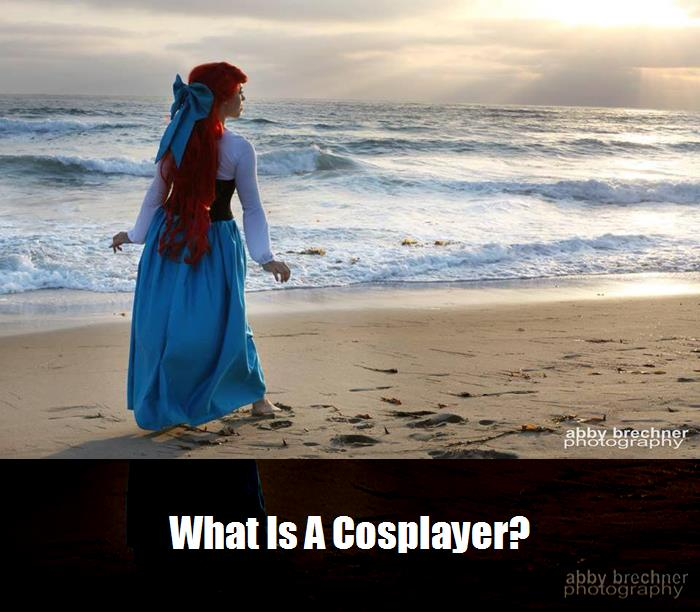 What Is A Cosplayer 2