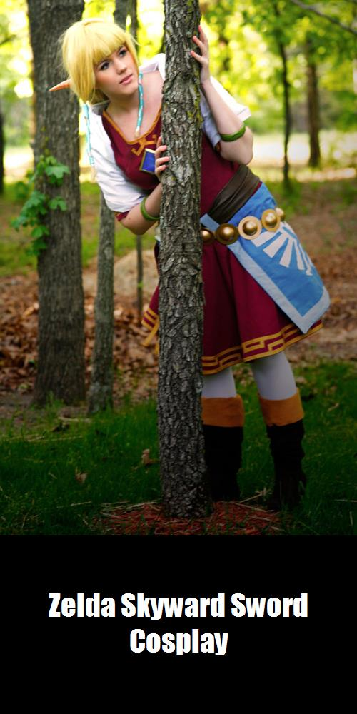 Zelda Skyward Sword Cosplay 3