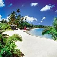 Places To Visit In St Lucia - Tourist Attractions In St Lucia & Things To Do In St Lucia